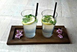 Lemon juice recipes